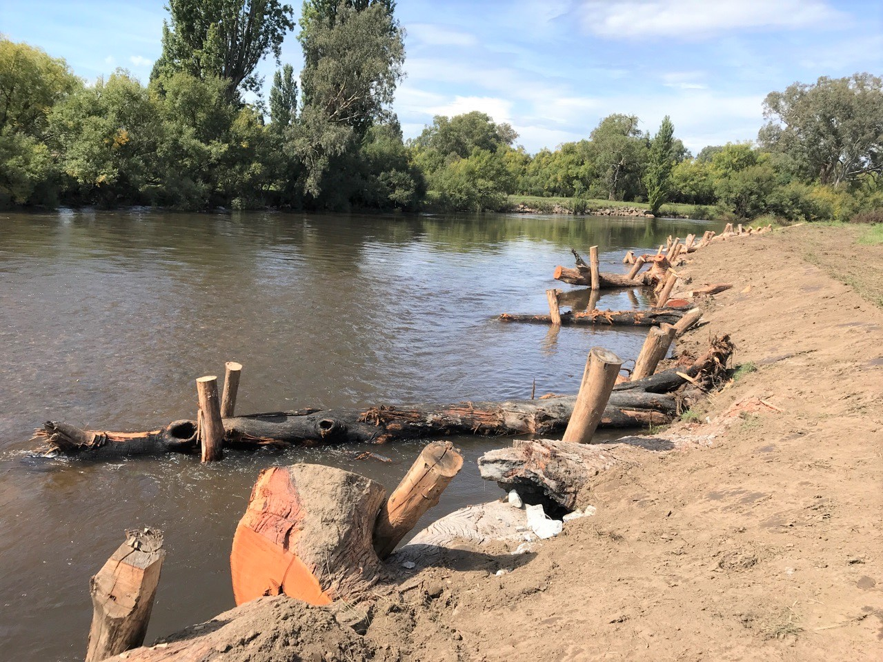 Completed project - logs in the river