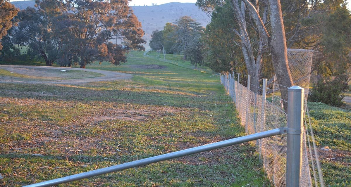 Good fencing can help to manage many small holding issues