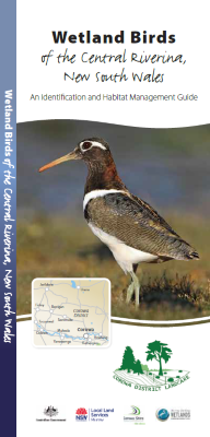 Wetland birds of the central Riverina, NSW