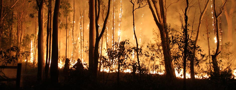 Emergencies and small landholders - fire