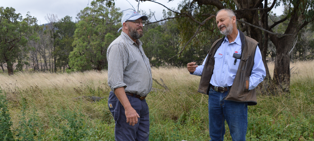 two men standing in a paddock talking to each other