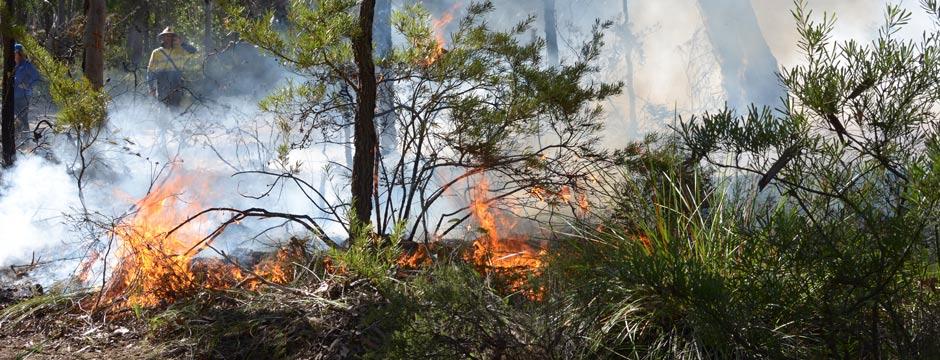 Aboriginal Land Management Practices