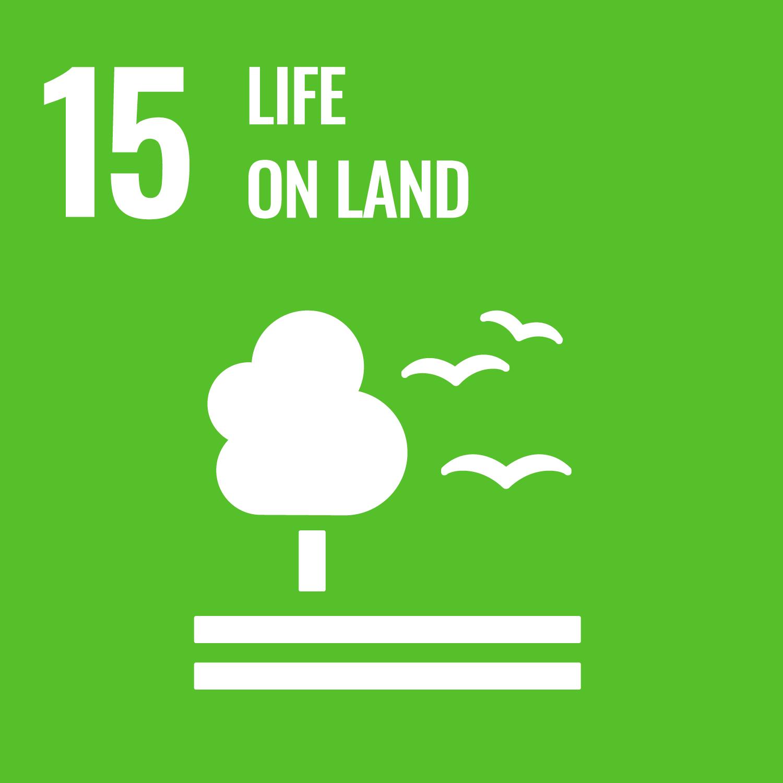 Goal 15 icon - Life on land