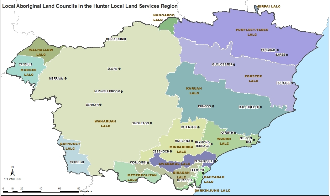 Map of Local Aboriginal Land Councils in the Hunter LLS region