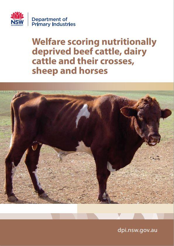 Cover of Welfare scoring livestock booklet