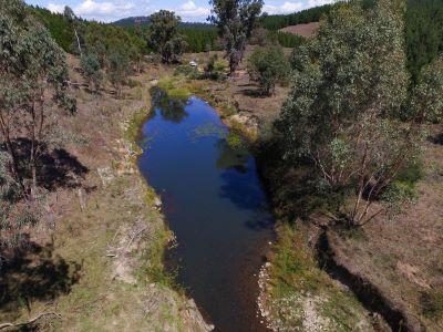 Coppabella Creek